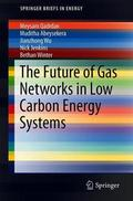 Cover of the book: The Future of Gas Networks