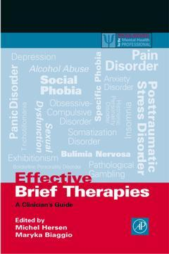 Cover of the book Effective Brief Therapies