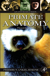 Cover of the book Primate Anatomy