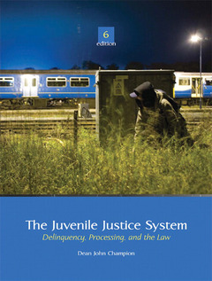 Cover of the book The juvenile justice system (6th ed )