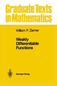 Couverture de l'ouvrage Weakly Differentiable Functions