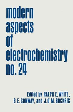 Cover of the book Modern aspects of electrochemistry vol 24
