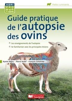 Couverture de l'ouvrage Guide pratique de l'autopsie des ovins