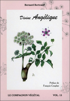 Couverture de l'ouvrage Divine angélique - Volume 13