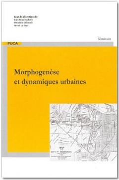 Couverture de l'ouvrage Morphogenèse et dynamiques urbaines