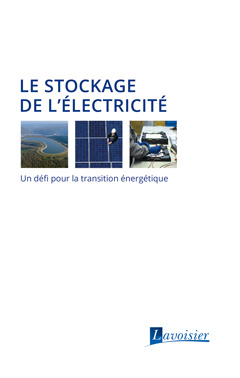 Cover of the book Le stockage de l'électricité