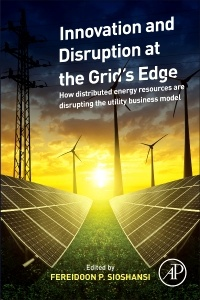 Cover of the book Innovation and Disruption at the Grid's Edge