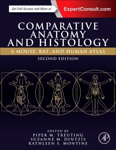 Couverture de l'ouvrage Comparative Anatomy and Histology
