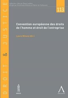 Couverture de l'ouvrage Convention européenne des droits de l'homme et droit de l'entreprise