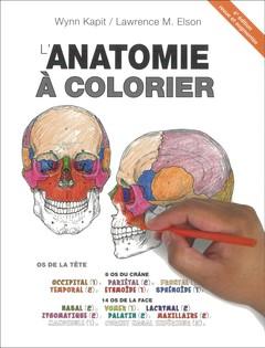 Couverture de l'ouvrage Anatomie à colorier