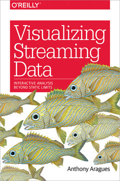 Cover of the book Visualizing Streaming Data