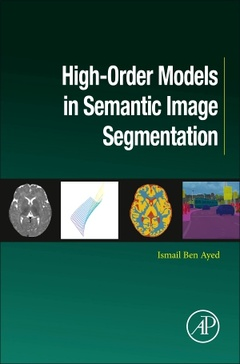 Cover of the book High-Order Models in Semantic Image Segmentation