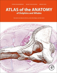 Cover of the book An Atlas of the Anatomy of Dolphins and Whales