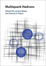 Cover of the book Multiquark Hadrons