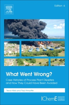 Cover of the book What Went Wrong?