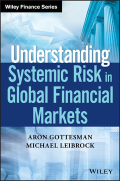 Couverture de l'ouvrage Understanding Systemic Risk in Global Financial Markets