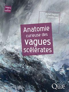 Couverture de l'ouvrage Anatomie curieuse des vagues scélérates