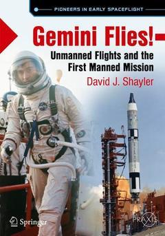 Cover of the book Gemini Flies!