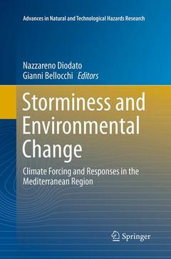 Couverture de l'ouvrage Storminess and Environmental Change