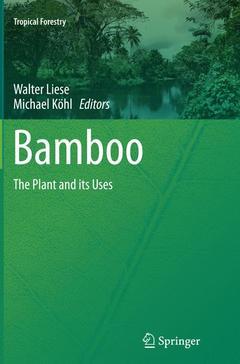 Couverture de l'ouvrage Bamboo