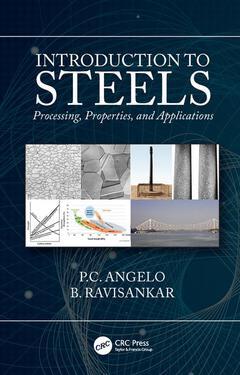 Couverture de l'ouvrage Introduction to Steels