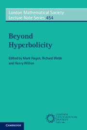Cover of the book Beyond Hyperbolicity