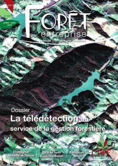 Couverture de l'ouvrage Forêt entreprise N° 247 : la télédétection au service de la gestion forestière