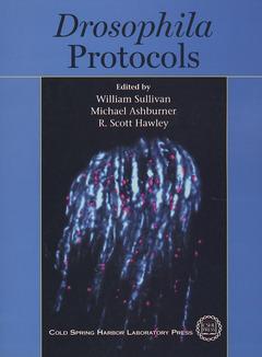 Couverture de l'ouvrage Drosophila protocols (paper)
