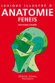 Couverture de l'ouvrage Lexique illustré d'anatomie Feneis