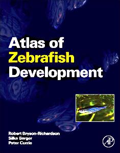 Cover of the book Atlas of Zebrafish Development