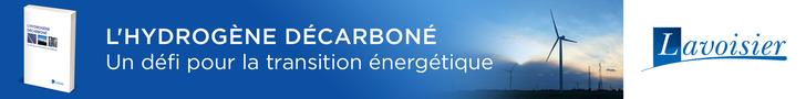 L'hydrogène décarboné. Un défi pour la transition énergétique