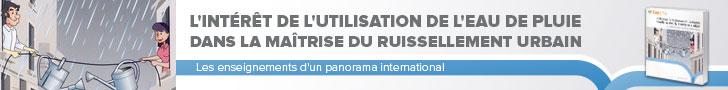 L'intérêt de l'utilisation de l'eau de pluie dans la maîtrise du ruissellement urbain (2° Éd.). Les enseignements d'un panorama international