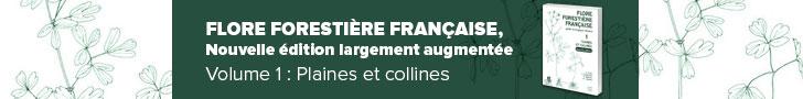 Flore forestière française. Plaines et collines. Guide écologique illustré