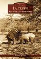 Couverture de l'ouvrage La truffe - âge d'or et gastronomie