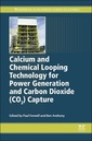 Couverture de l'ouvrage Calcium and Chemical Looping Technology for Power Generation and Carbon Dioxide (CO2) Capture