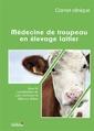 Couverture de l'ouvrage Médecine de troupeau en élevage laitier