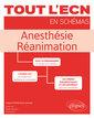 Couverture de l'ouvrage Anesthésie réanimation