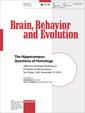 Couverture de l'ouvrage The Hippocampus: Questions of Homology