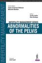 Couverture de l'ouvrage Infertility Management Series: Abnormalities of the Pelvis