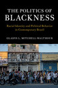 Couverture de l'ouvrage The Politics of Blackness