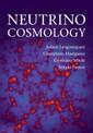 Couverture de l'ouvrage Neutrino Cosmology