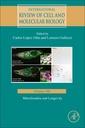 Couverture de l'ouvrage Mitochondria and Longevity
