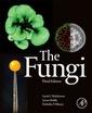 Couverture de l'ouvrage The Fungi