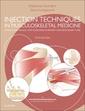 Couverture de l'ouvrage Injection Techniques in Musculoskeletal Medicine