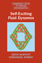 Couverture de l'ouvrage Self-Exciting Fluid Dynamos