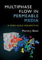 Couverture de l'ouvrage Multiphase Flow in Permeable Media