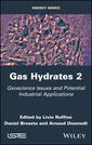 Couverture de l'ouvrage Gas Hydrates 2