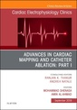 Couverture de l'ouvrage Advances in Cardiac Mapping and Catheter Ablation: Part I, An Issue of Cardiac Electrophysiology Clinics