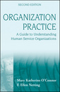 Couverture de l'ouvrage Organization practice: a guide to understanding human service organizations, 2nd edition