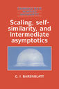 Couverture de l'ouvrage Scaling, self similarity and intermediate asymptotics (Cambridge texts in applied mathematics, 14) paper